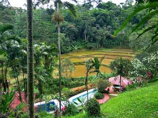 villa luas besar murah bogor sukabumi kolam renang