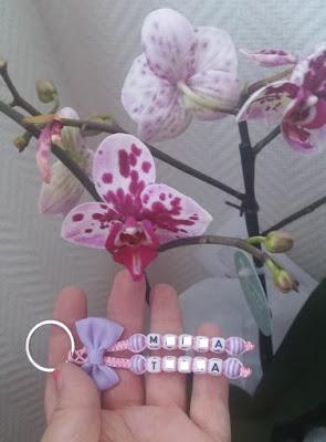 orchidee bijoux