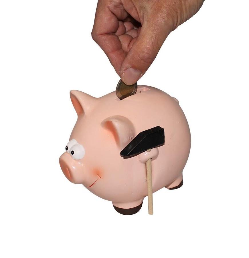 El cerdo simbolíza la prosperidad y la abundancia