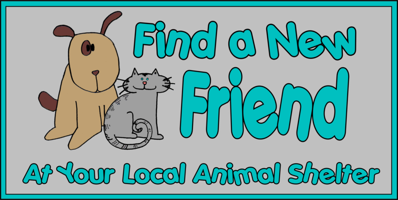 Tillman Skates: Find a New Friend at Your Local Shelter