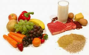 Nutrition et comment le corps utilise la nourriture ?