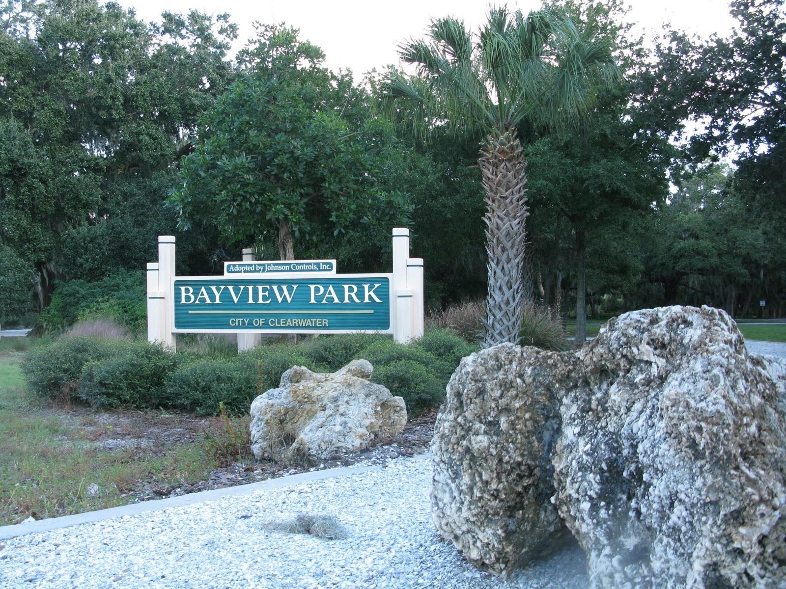 Busy Budi: Exploring my neighbourhood in Clearwater Florida