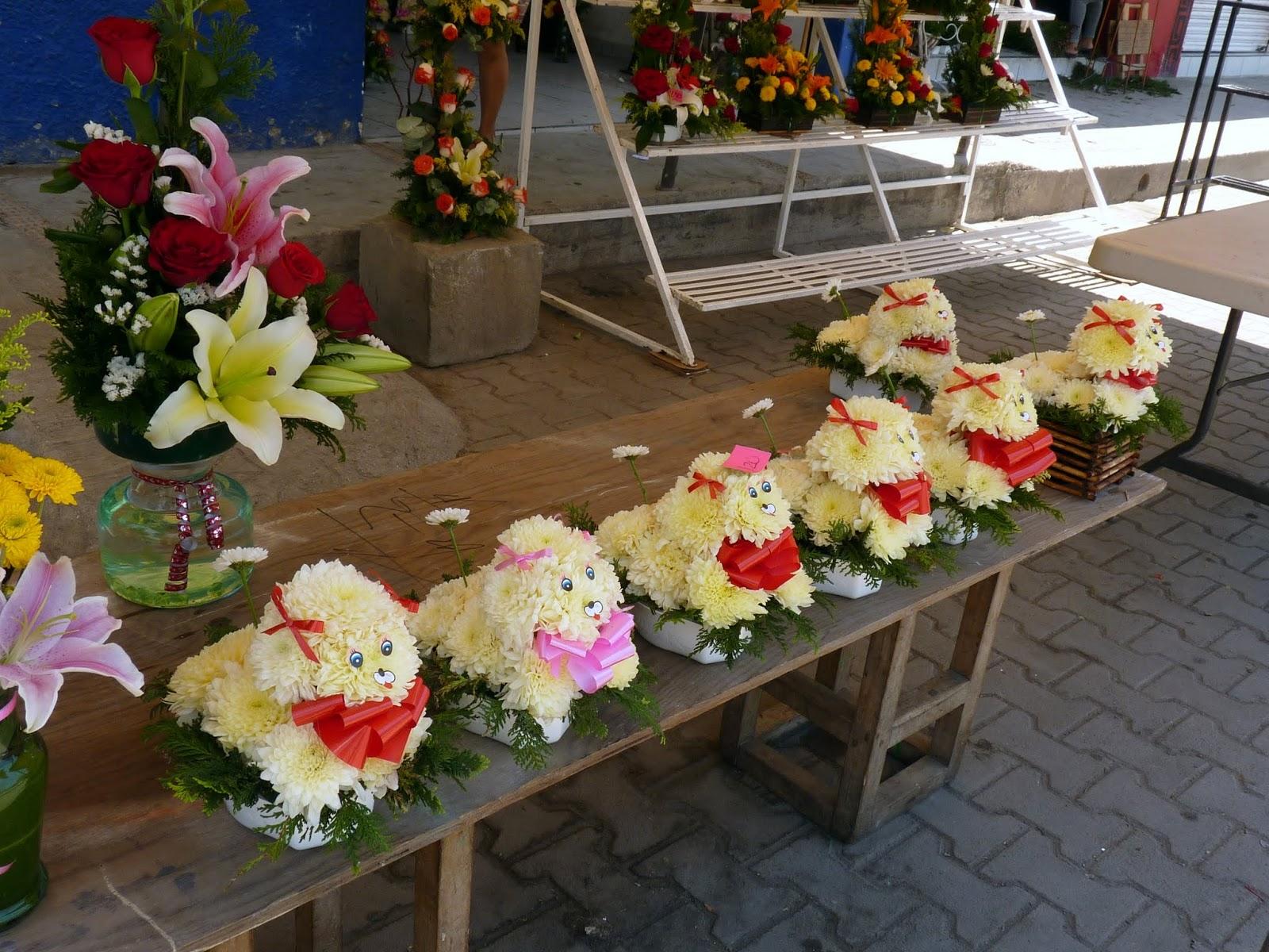 New Beautiful Flowers » dog flower bouquet   Beautiful Flower