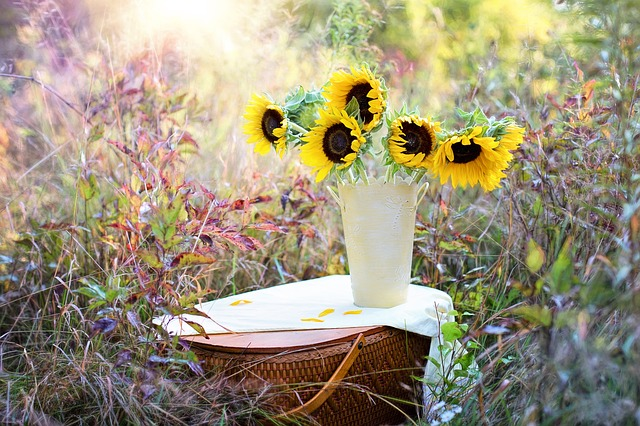 hoa tang ban gai dep nhat tp hcm