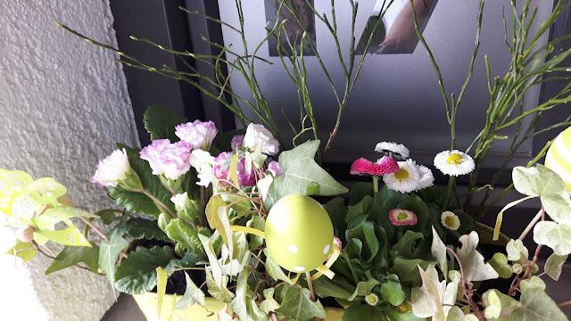 Frühling vor der Haustüre