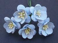 http://www.odadozet.sklep.pl/pl/p/Kwiatki-WOC-KWIAT-WISNI-baby-blue-062-25mm-5szt/5779