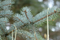 Easy DIY Christmas Pine Cone Decor That Will Amaze Everyone