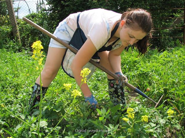 ogrodowy fartuszek, ogrod przydomowy