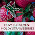 How-To Prevent Moldy Strawberries