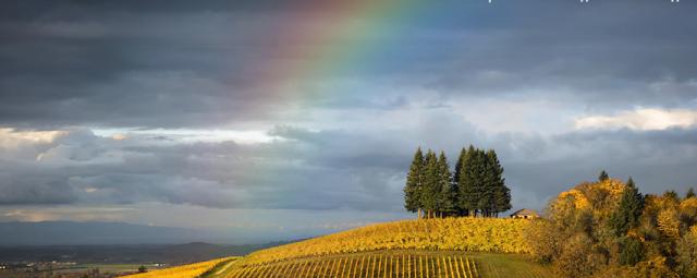 Как добавить радугу на фото в Фотошопе?