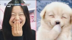 경례 장인 아이돌