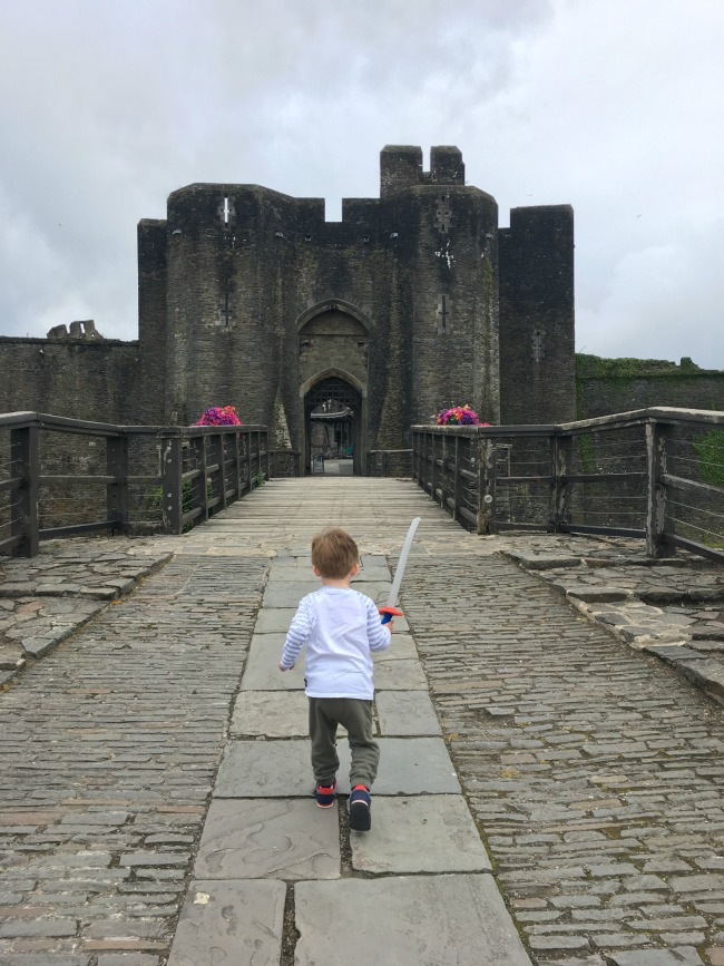 July-bear-at-caerphilly-castle