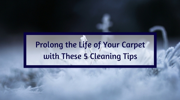 Prolong the Life of Your Carpet with These 5 Cleaning Tips
