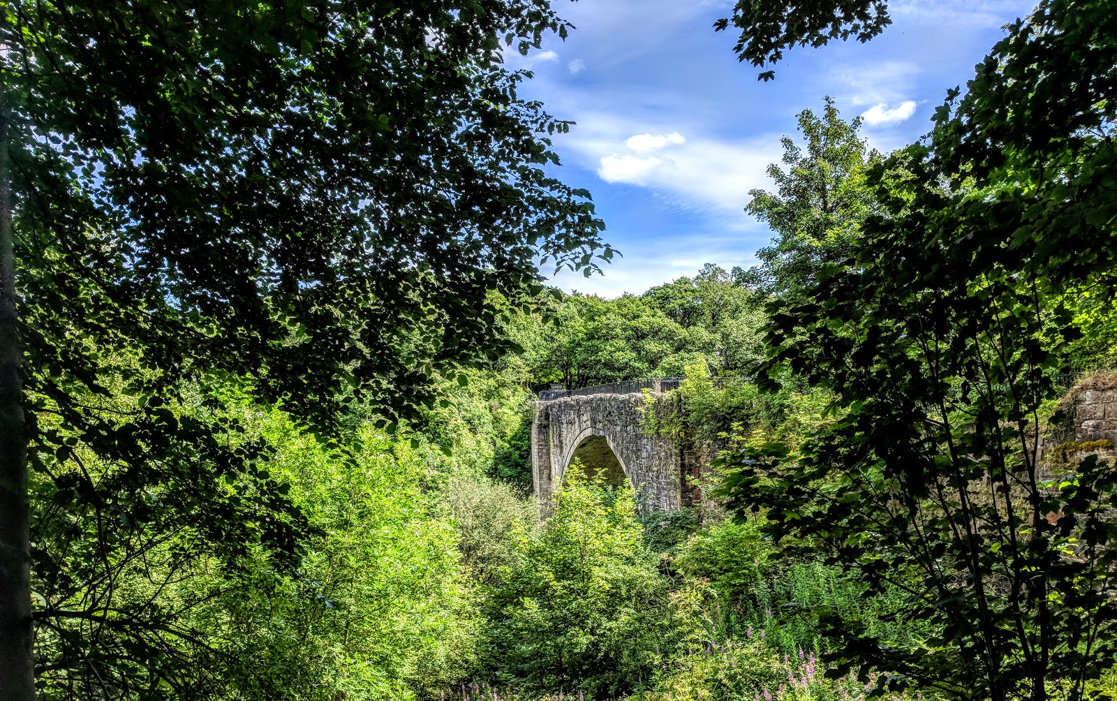 Tanfield Railway | Britain's Oldest Railway & a Picnic at Causey Arch - causey arch bridge