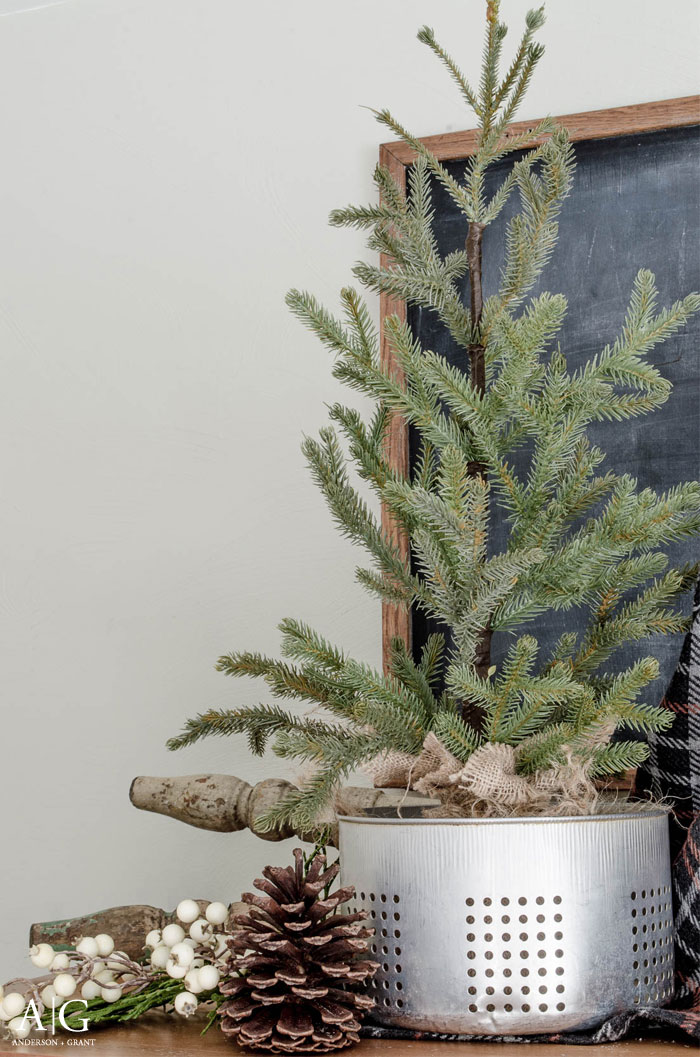 A simple tree and pinecones make perfect winter decor.  ||  www.andersonandgrant.com