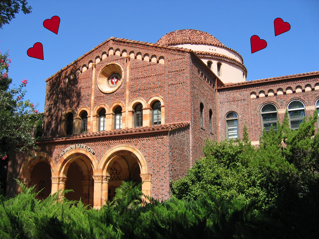 Chico State Counseling >> Chico Admissions Counselor From Chico With Love