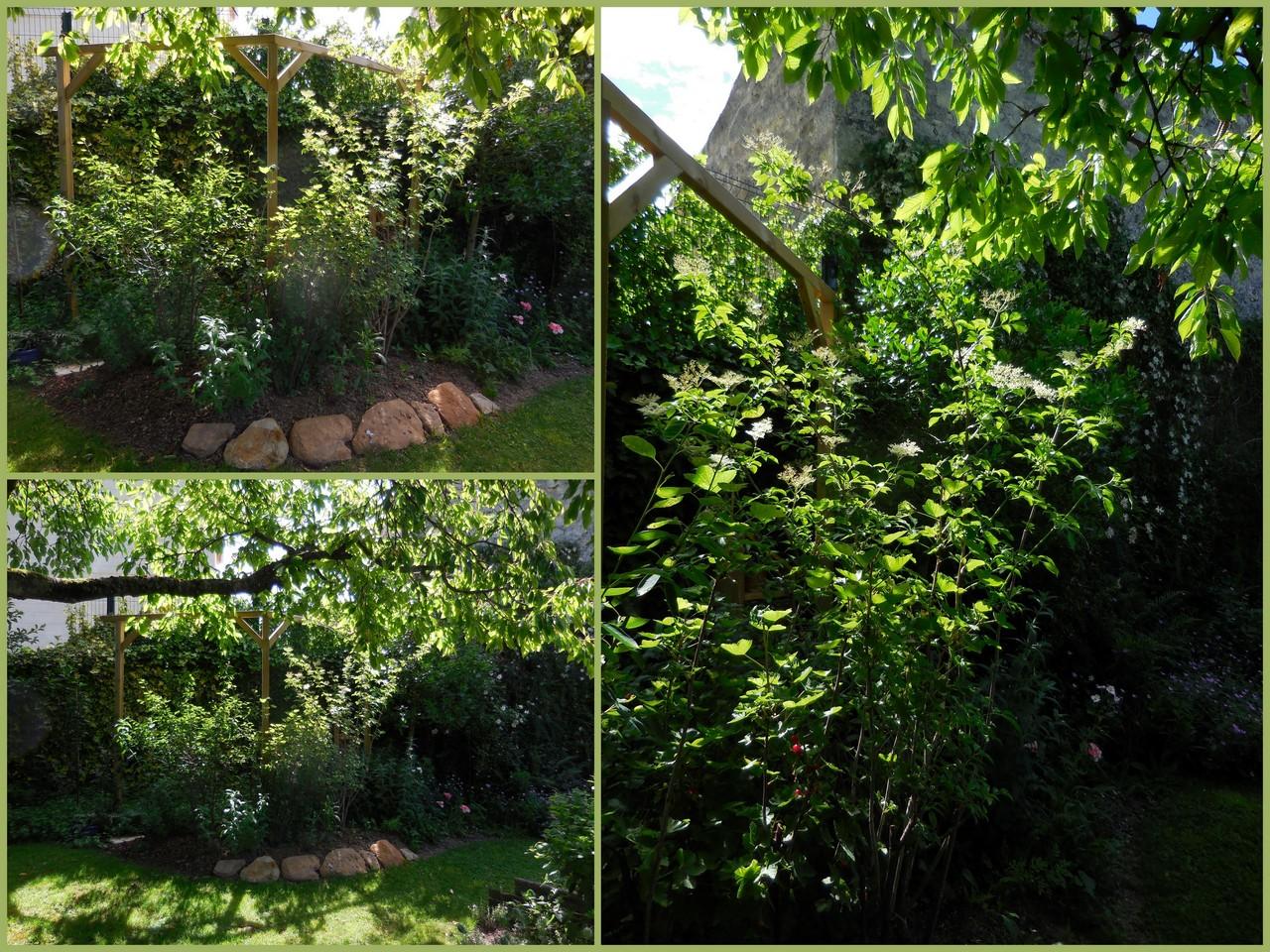 Cagouille 39 s garden chaalis 2017 le jardin du chat vert for Jardin du pic vert