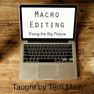 Macro Editing - Developmental Editing for Novelists