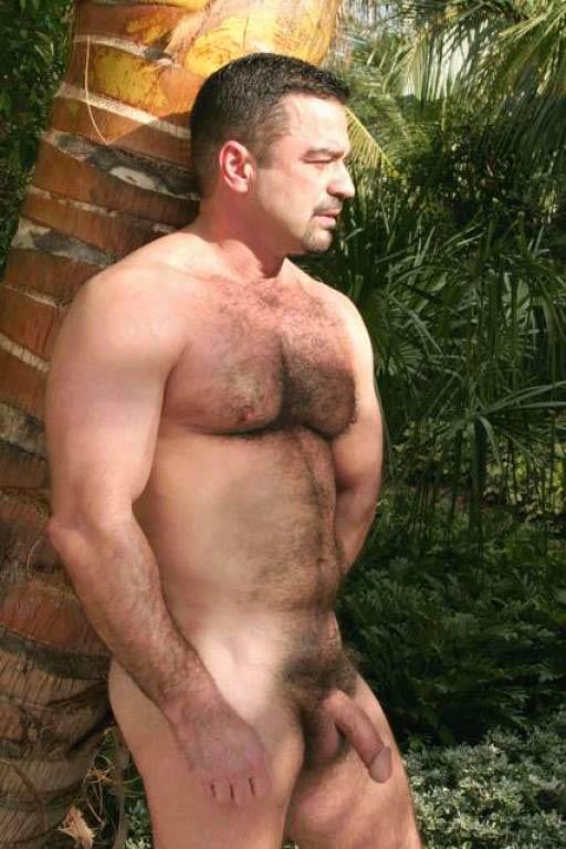 chubby bear tumblr