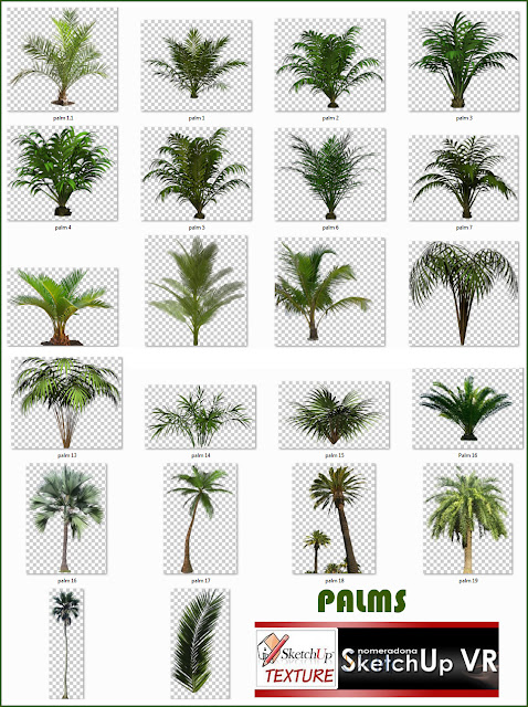 cut out trees palms