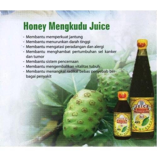Indo Nesian Tradisi Onal Medicine Suruhan Obat: TRADITIONAL MEDICINE: Honey Mengkudu Juice (B3