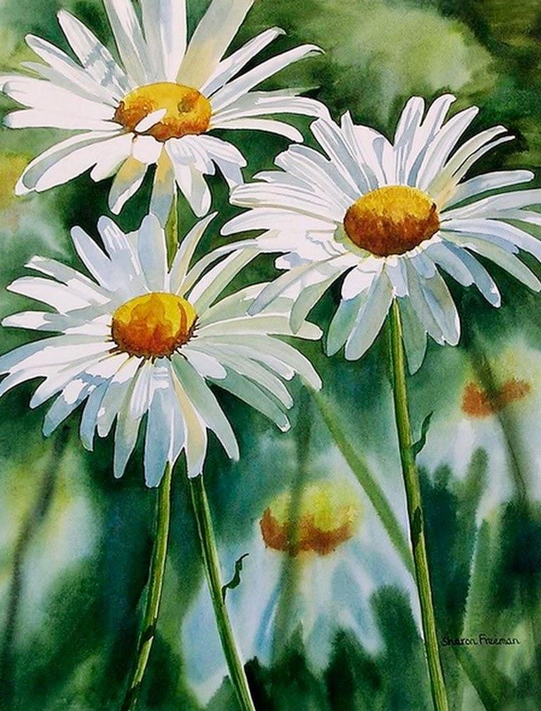 Imagenes Del Dia De Pavo >> Cuadros Modernos Pinturas y Dibujos : Cuadros de Flores Blancas Pintados con Acuarelas
