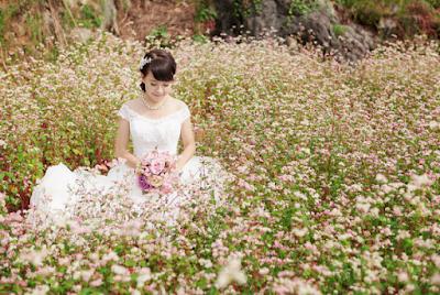 Hà Giang đẹp rạng rỡ với lễ hội hoa tam giác mạch 1