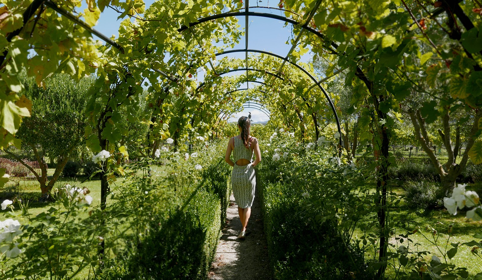 Euriental   luxury travel & style   Hans Herzog Winery, Marlborough, New Zealand