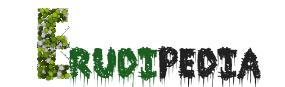 Erudipedia