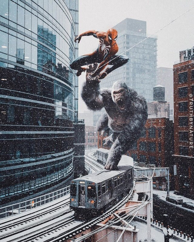 05-King-Kong-and-Spider-Man-truthbynature-Surrealism-in-Animal-Photo-Manipulation-www-designstack-co