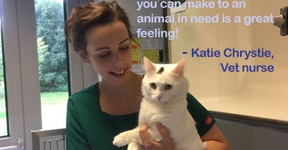 Cats Protection Cat Care Assistant