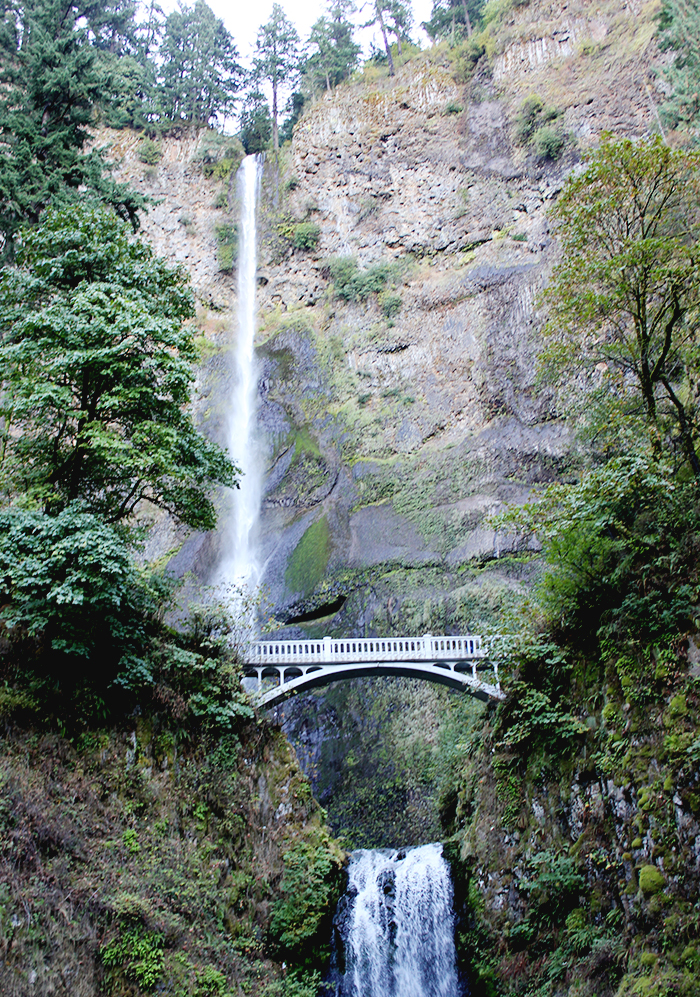 picsoandrea Multnomah Falls, Tim Ram Slams, and Fred Armisen