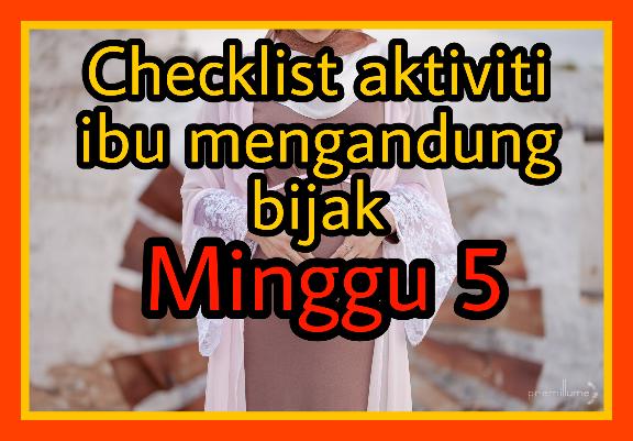 Checklist ibu mengandung minggu 5