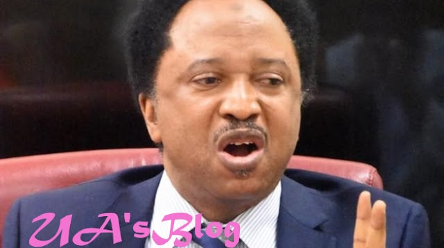 Shehu Sani reveals how Buhari, National Assembly can settle rift