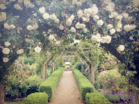 http://pridenstyle.blogspot.co.uk/2016/06/very-british-english-rose-garden.html
