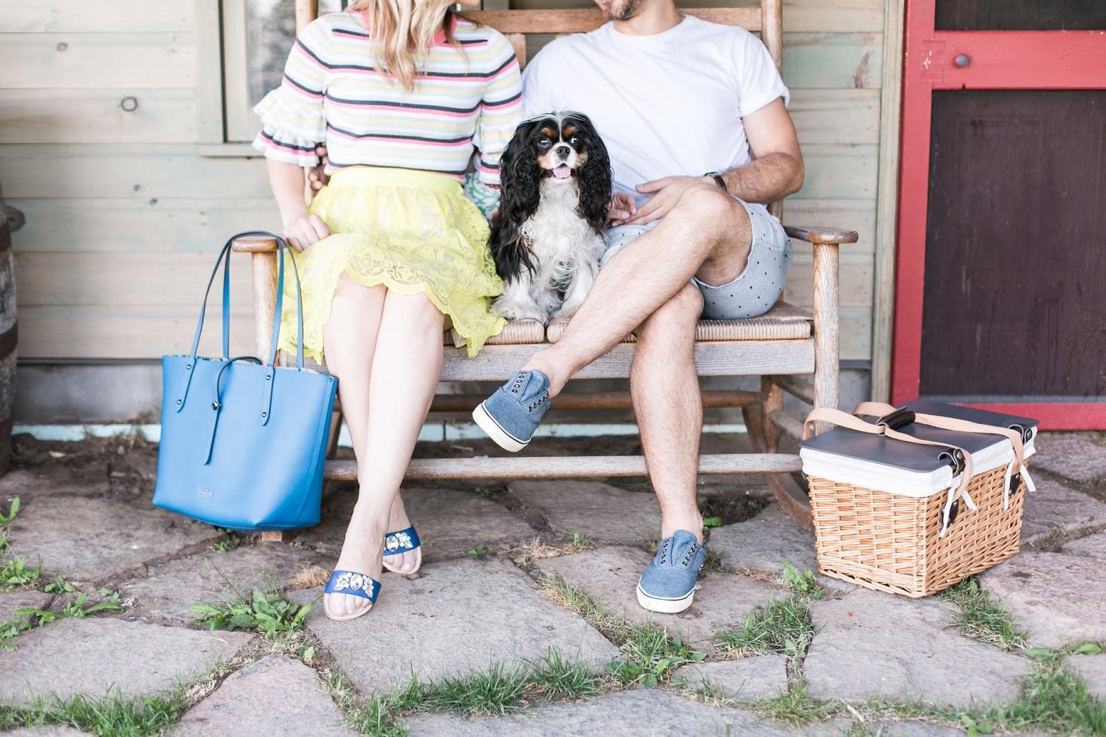 Bijuleni | Cavalier King Charles Spaniel Puppy