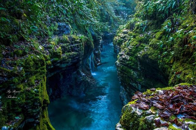 Красоты Грузии. Мартвильский каньон