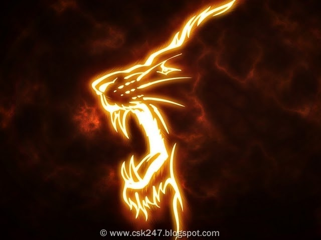 CSK Lion On Fire Wallpaper