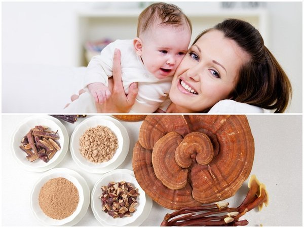 Cách dùng nấm linh chi mang hiệu quả vượt trội cho sức khỏe