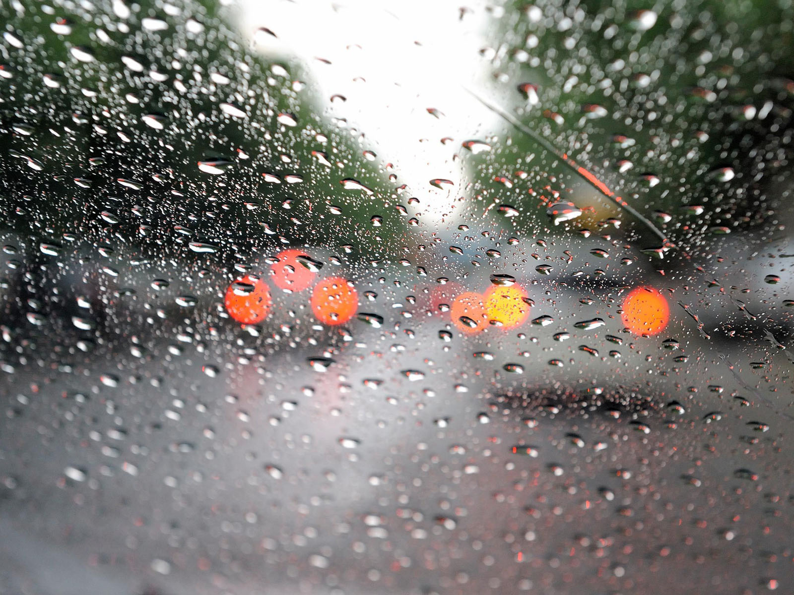 wallpapers: Rain Drops...