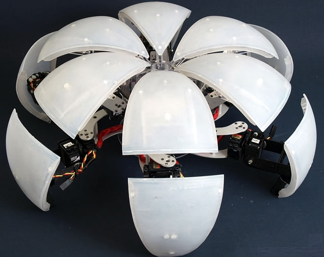 Transformer Robot Morphex: the Hexapod Roll like Football and Walk like Crab