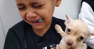 African American child holding puppy