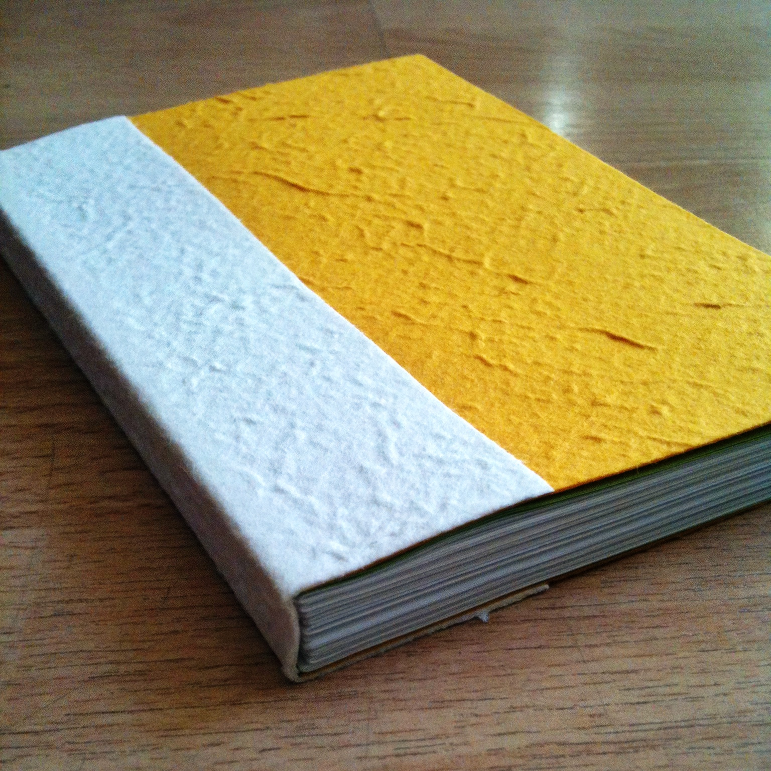 Paisley And Brown Paper: MORE Adventures In Book Binding