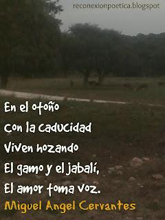 blogdepoesia-poesia-miguel-angel-cervantes-otoño