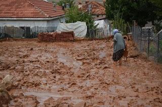 Antalya'yı vuran selde birçok tarım arazisi zarar gördü
