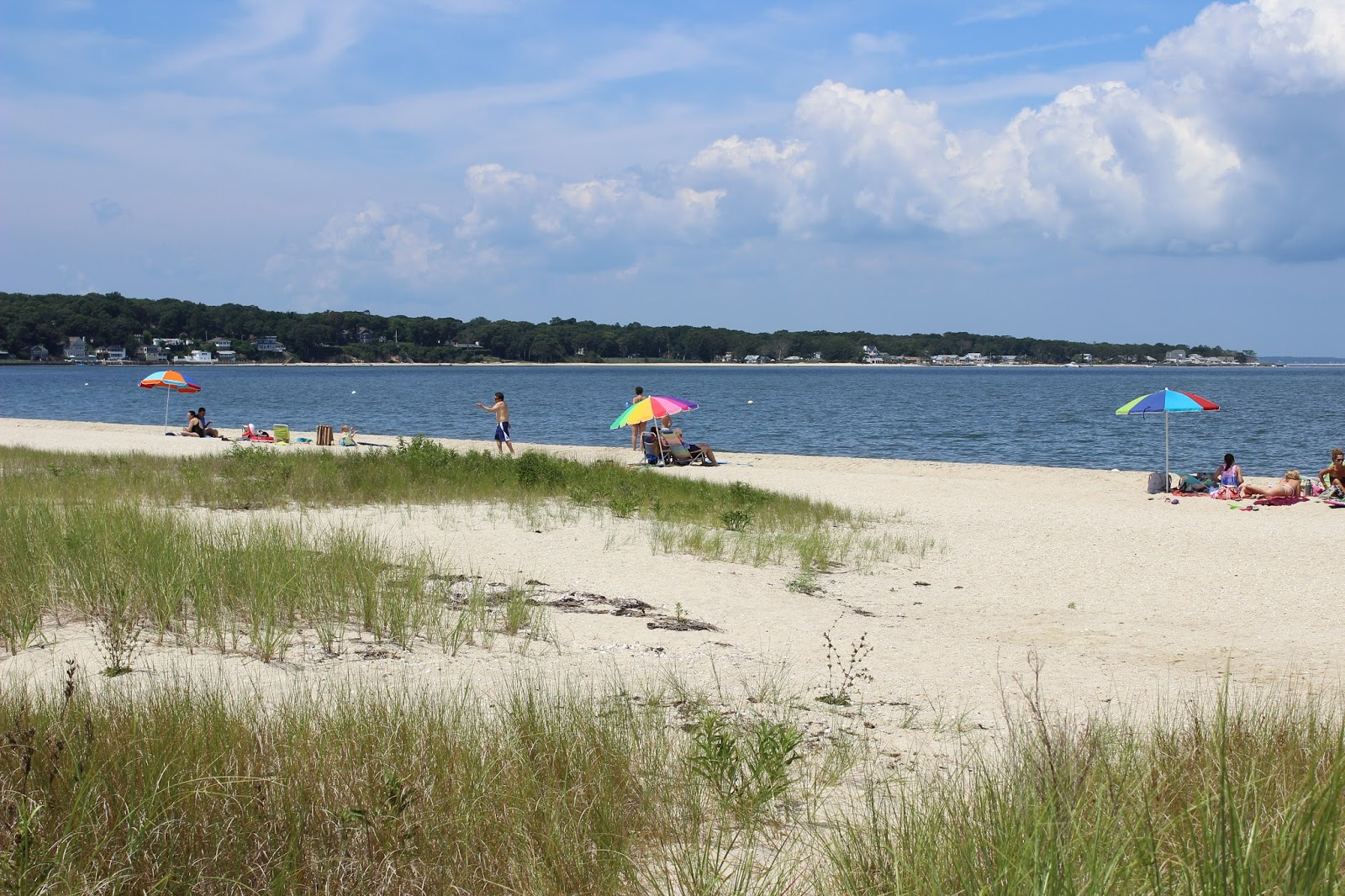 Acre Beach Property To Southampton Town Which Sag Harbor Village Is A Part Of Back In The 1950s Renown For Its Beauty And Easy Access