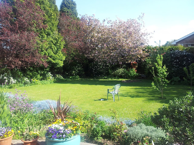 sunshine garden paradise