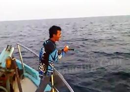 Mancing Dapat Ikan Tuna Gigi Anjing