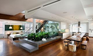 soggiorno con piante immagine