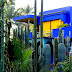 The Indisputable Truth About Majorelle Garden Marrakech That Nobody Is Sharing With You